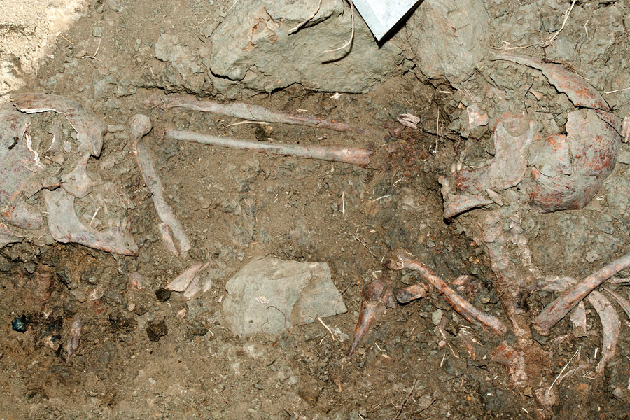 Restos encontrados en las catas