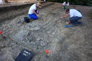 Excavaciones arqueológicas en una fosa común en el Marrufo (Foto: Adrià Riudavets Ramos).