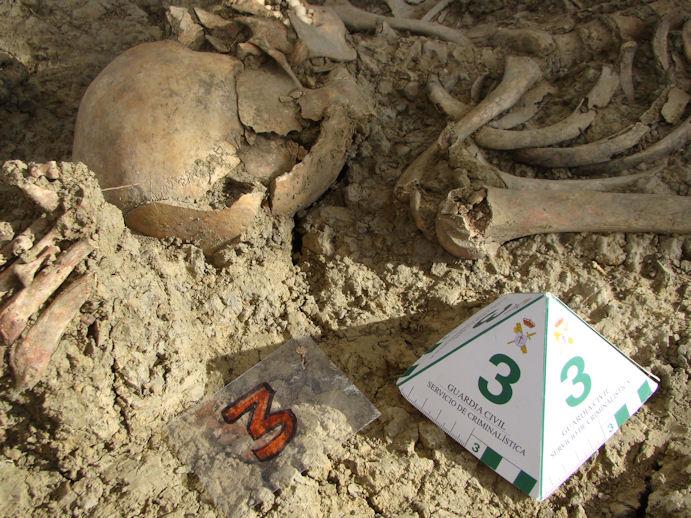 Un indicador de la Guardia Civil, junto a uno de los esqueletos descubiertos en El Marrufo.