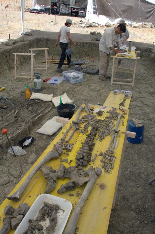 Clasificación de restos óseos a pie de campo en una de las fosas comunes del Marrufo. Foto: Juande