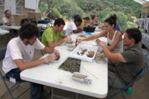 Operaciones de limpieza de restos óseos por parte de voluntarios del campo de trabajo de las excavaciones arqueológicas de las fosas comunes del Marrufo. Foto: Juande