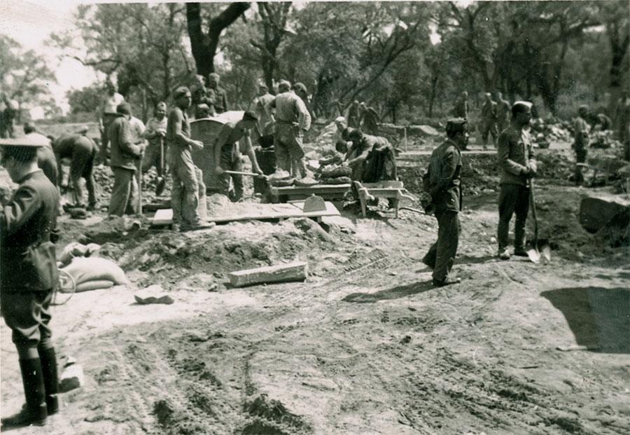 Construcción del Camino